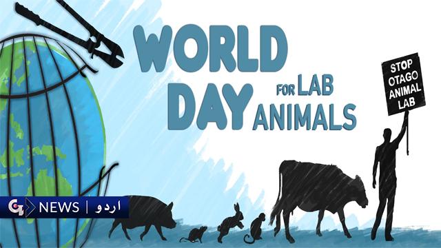 لیبارٹری جانوروں کے لئے عالمی دن