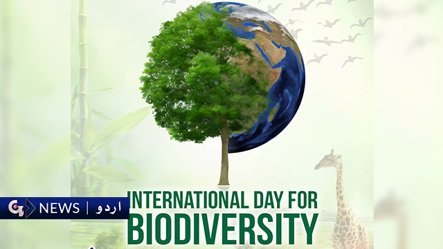 دنیا بھر میں حیاتیاتی تنوع کا دن منایا جارہا ہے
