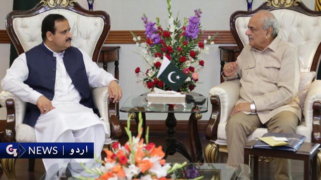 وزیر داخلہ اور وزیراعلیٰ پنجاب ملاقات میں انتہاپسندوں کے خلاف کارروائی پر اتفاق