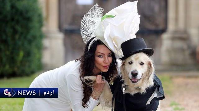 سابقہ ماڈل کا کتے سے شادی کا فیصلہ