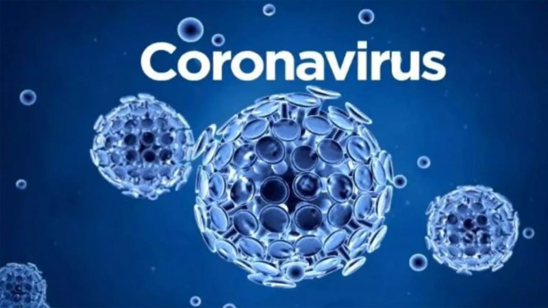 کرونا وائرس کے نمونوں میںنئی قسم کے وائرس کی تبدیلیاں